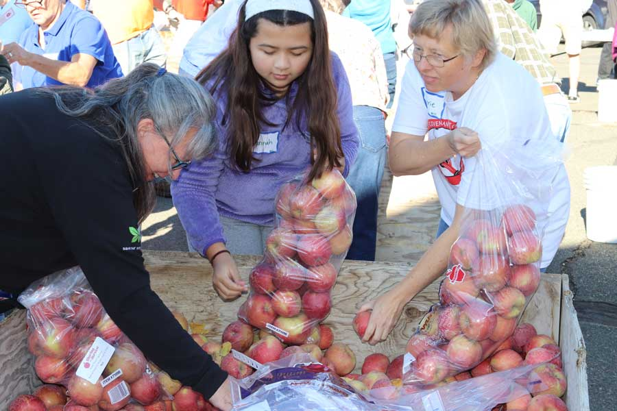 Nice people bagging apples